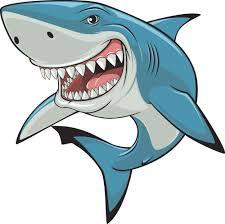 Shark's Avatar